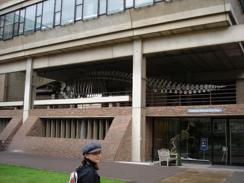 And that's the museum, unfortunately closed on Sundays. Notice the prehistoric skeleton of some kind of a whale.