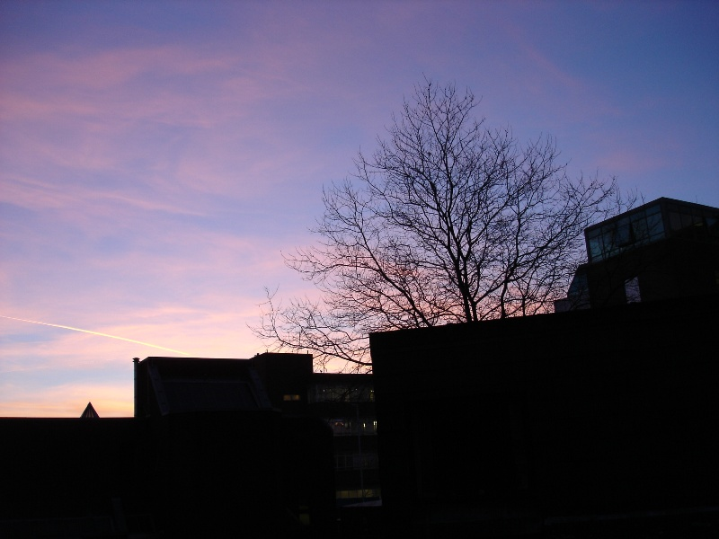 Lovely sky on Thursday afternoon. I captured this beautiful image from our kitchen in college House...
